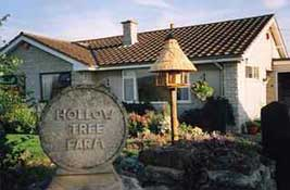 Hollow Tree Farm B&B,  Wells